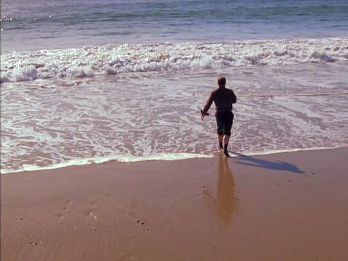 The Marine Biologist -Seinfeld