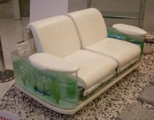 Aquarium Sofa