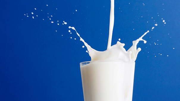 Milk Usage