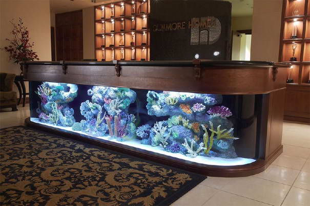 Reception aquarium