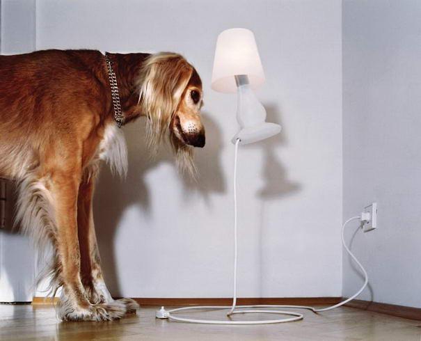 FlapFlap Lamp