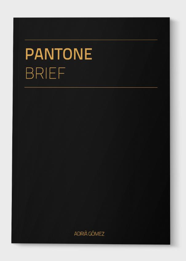 Pantone Brief (1)