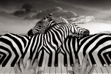 by thomas barbey-01