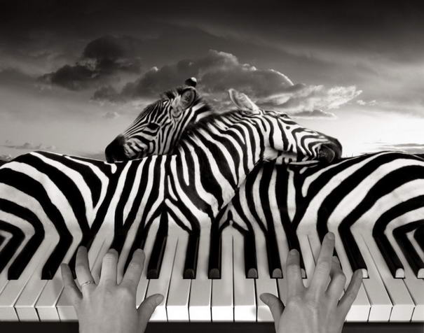 Copyrights © Thomas Barbèy LLC (1)