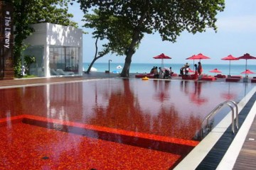 Blood-Red Pool