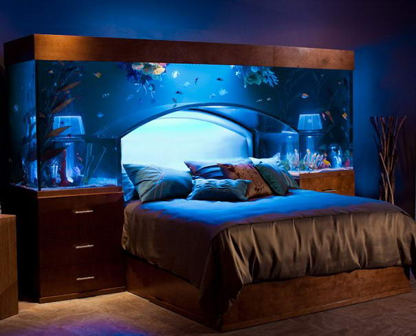 Headboard Design Aquarium headboard