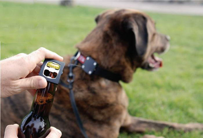 Dog Accessories Bark4Beer Dog Collar