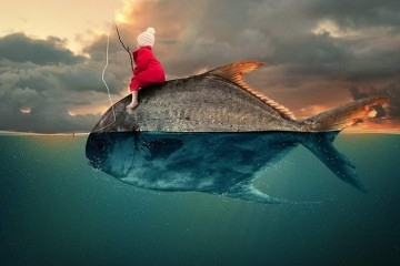 by caras ionut_05