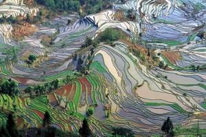 Yuanyang County