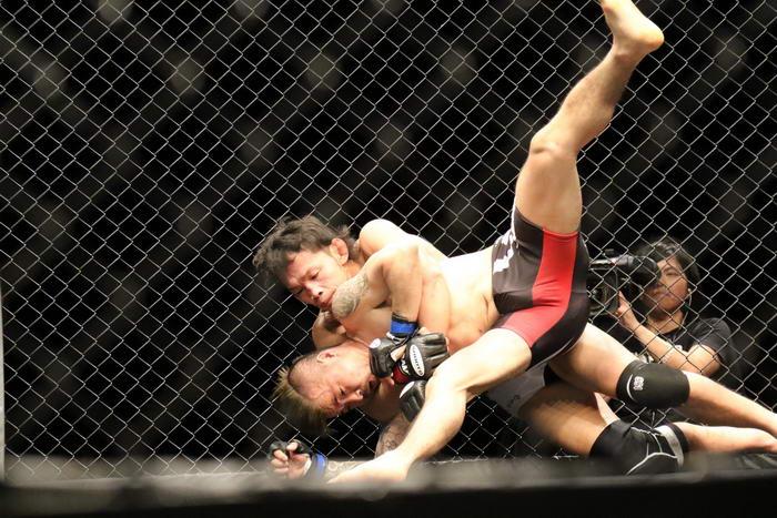 MMA (2)