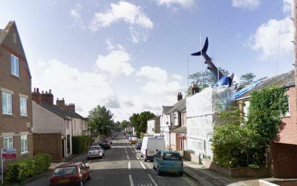 Shark On Roof