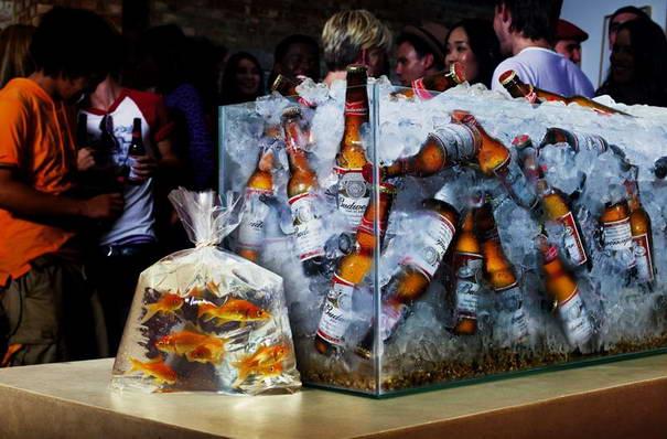 Budweiser Goldfish