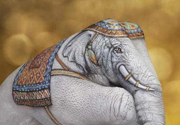 Elephant White on gold