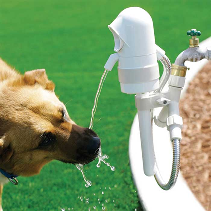 Outdoor Pet Drinking Fountain