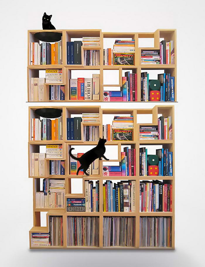 Cat-Library (1)