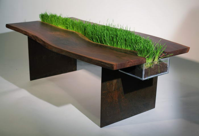 Walnut and Grass