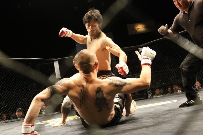 MMA (3)